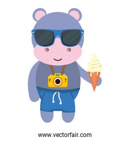 hippo with photographic camera and ice cream