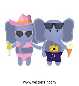 elephants couple with photographic camera and cocktail