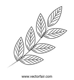 branch with leafs ecology icon