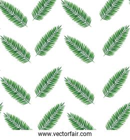 exotic leafs palms tropical pattern