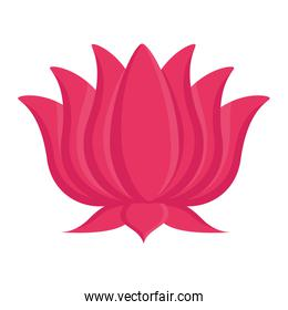 lotus flower indian isolated icon