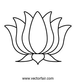 lotus flower indian isolated design