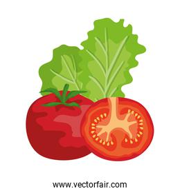 fresh tomatoes and lettuce vegetables healthy
