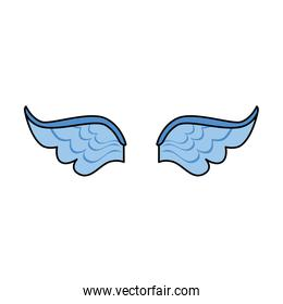 feather wings isolated