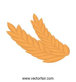 wheat leafs isolated icon