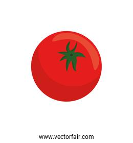 tomato vegetable icon