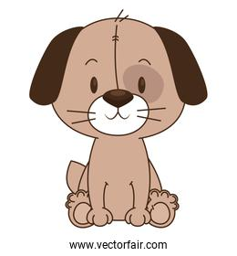 cute and adorable dog character
