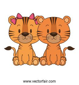 cute and adorable couple tigers characters