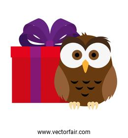 cute and adorable owl with gift isolated icon