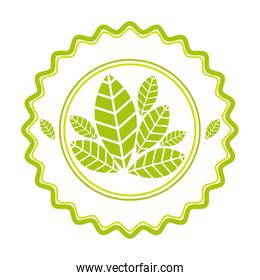 Round emblem with leaves