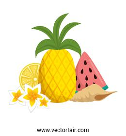 watermelon sliced with pineapple and snail shell