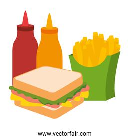 delicious sandwish with sauces and french fries