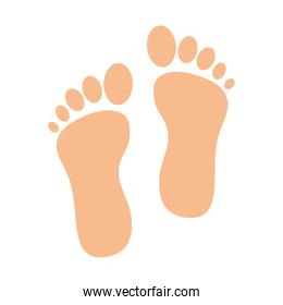 foot print isolated icon