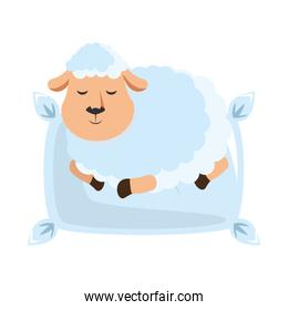 Sheep sleeping on pillow