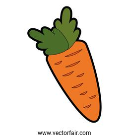 carrot fresh vegetable icon