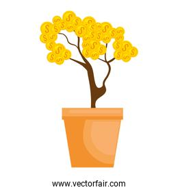 plant with coins icon