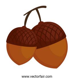 nuts fruits isolated icon