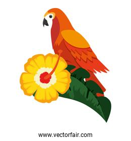 cockatoo exotic bird with flower