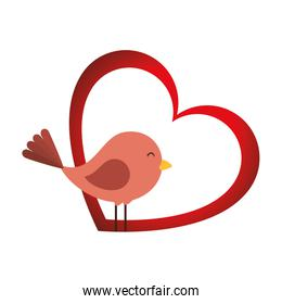 cute bird with heart