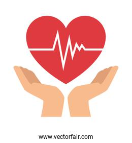 hands with heart cardio isolated icon