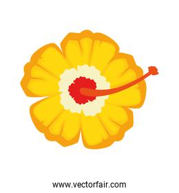 exotic flower isolated icon