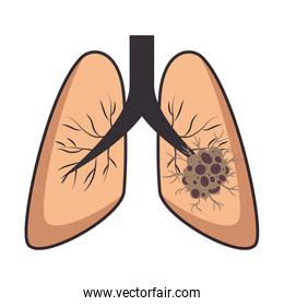 lung cancer isolated icon