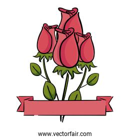beautiful roses with ribbon decorative icon