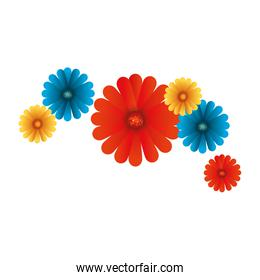 beautiful flowers colorful decorative icon