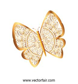 golden butterfly flying with mandala pattern