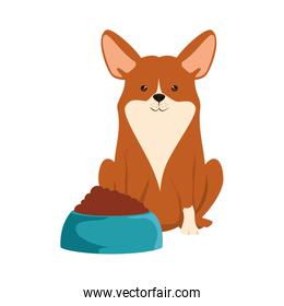 cute dog breed with dish food character