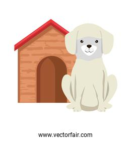 cute dog breed with wooden house character