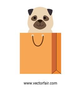 cute dog in shopping bag character
