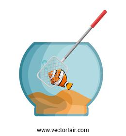 aquarium bowl with colors fish and fishing net
