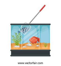 aquarium with colors fish and fishing net