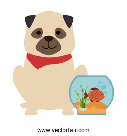 aquarium bowl with colors fish and dog in flat style