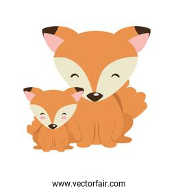cute father and son foxes characters
