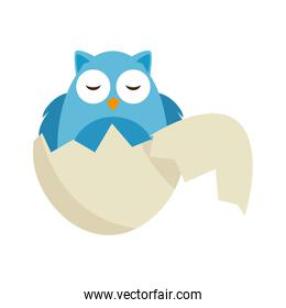 cute owl baby breaking the shell character