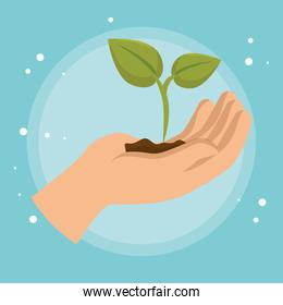 hand lifting plant ecology icon