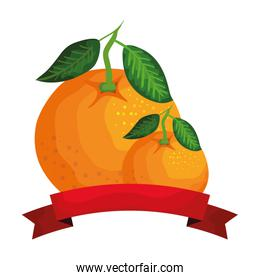 fresh oranges fruits with ribbon seal