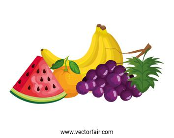 group of fresh fruits nature