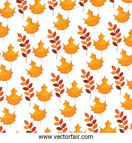 autumn branch and dry maple leafs pattern