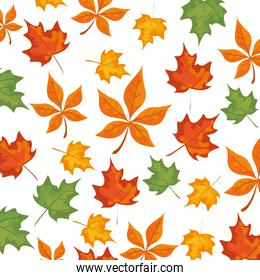 autumn pattern with leafs nature
