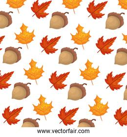 autumn pattern with leafs and nuts