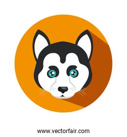 cute dog isolated icon