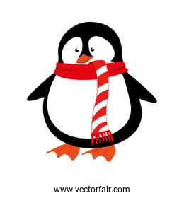 cute penguin with scarf isolated icon