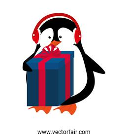 cute penguin with gift isolated icon