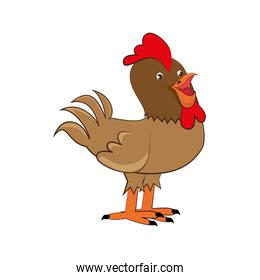 chicken farm isolated icon