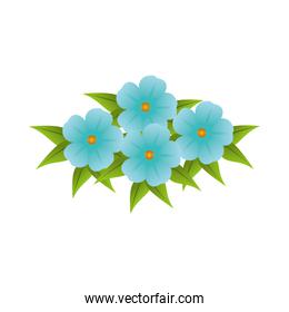 blue flowers bouquet floral design with leaves
