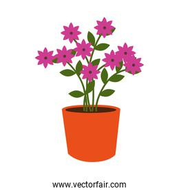flower pot decorative icon