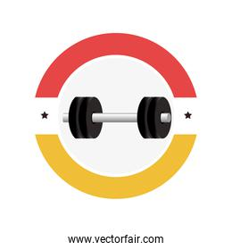 weight lifting gym device icon